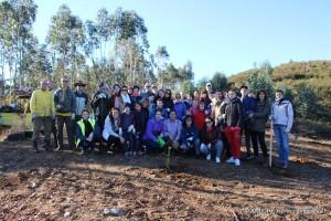 Plantação de Árvores na Foz do Sousa - 2016